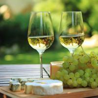 SUSONOワイン部